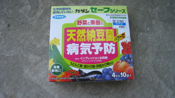 9059minitomato,kusuri_1.jpg