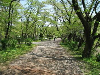 弘法山1.jpg